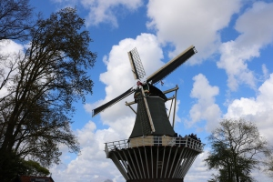 Windmill at Keukonhof
